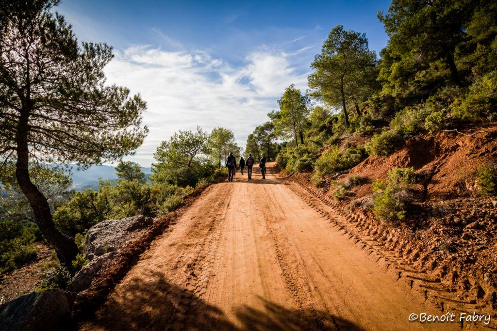 Provence_Aix_Zola (7)
