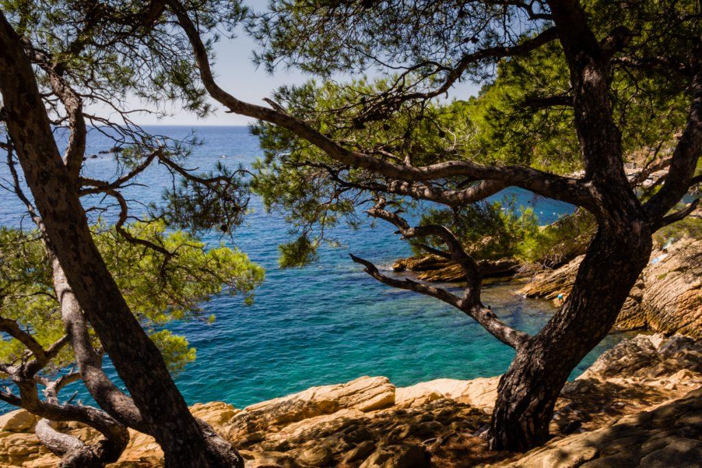 Provence_Calanque_Mejean (5)