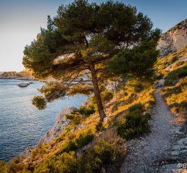 Provence_Calanque_Vesse (12)
