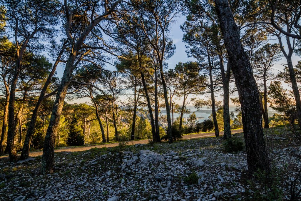 Provence_Faron (6)