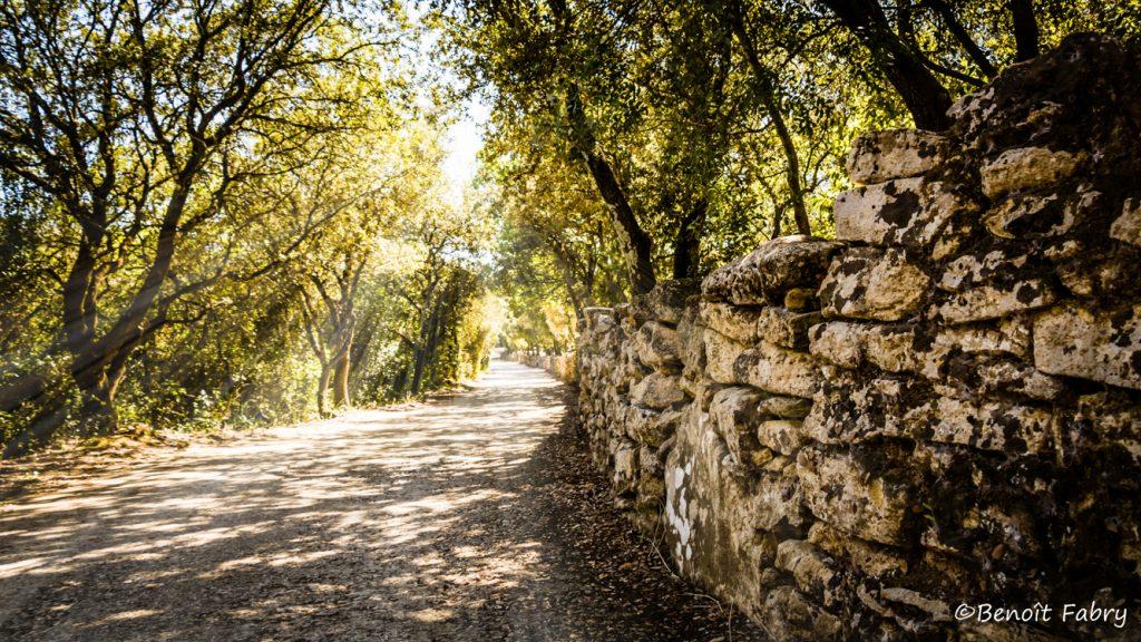 Provence_Pont_Gard (2)
