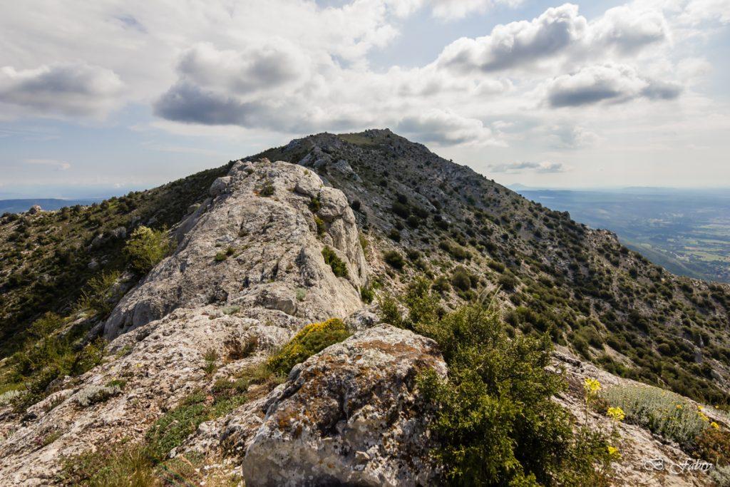 Chemin des Cretes Ste Victoire (5)